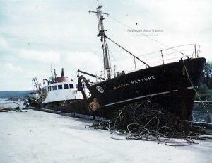 M.T. Acadia Neptune