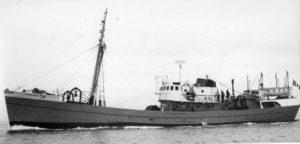 M.T. Oceania Rosa