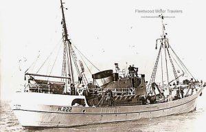 M.T. Hildina H222