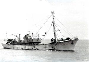 M.T. Navena FD172
