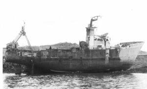 M.T. Navena FD323