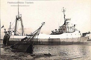M.T. Irvana FD141