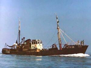 M.T. Celita LT246