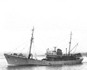 M.T. Collena FD20