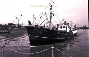 M.T. David Wilson A513