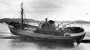 M.T. Lucida FD437