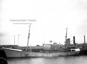 M. T. Luneda FD175