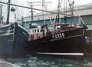 M.T. Tudor Queen FD326
