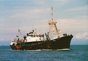 M.T. Stella Orion FD58