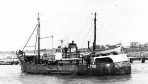 M.T. Kingfish LT186