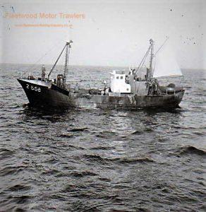 M.T. Eureka Z558